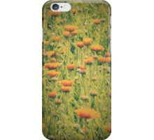 sunny flowers & green grass iPhone Case/Skin