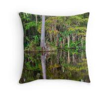 Big Cypress National Preserve Throw Pillow