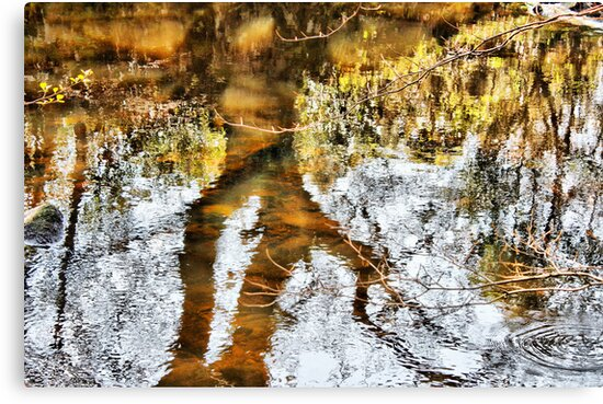 River of gold by Agnes McGuinness
