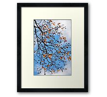 Beautiful Tree Abstract Framed Print