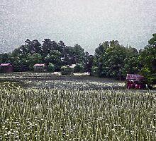 Tobacco Farm by Sanguine
