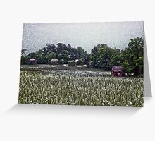 Tobacco Farm Greeting Card