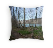 Path by the River Throw Pillow