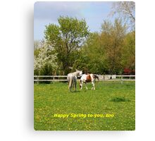 Happy Spring to you, too Canvas Print