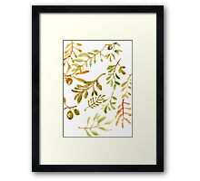 Olive Branches Painted w/ Watercolor Framed Print