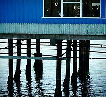 Redondo Beach Pier by Sophie Gonin