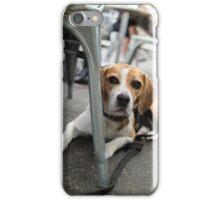 Cafe Beagle iPhone Case/Skin