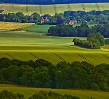 North Downs Way 10 by gollum1985