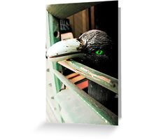 French Quarter Crow Greeting Card
