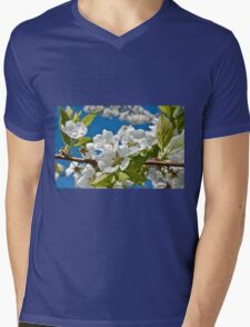 Plum Tree Blossoms Mens V-Neck T-Shirt