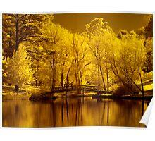 Autumn in IR Poster