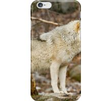 Solitary Timber Wolf iPhone Case/Skin