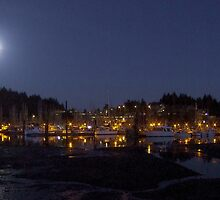 Ucluelet Harbour Lights by Gail Bridger