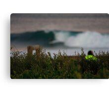 Surfer? Canvas Print
