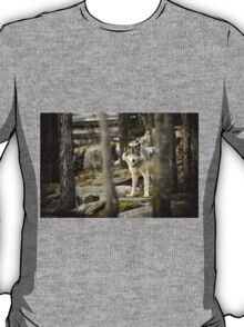 Timber Wolf Between the Trees T-Shirt