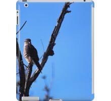 Brooklyn Falcon II iPad Case/Skin