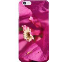 Fuschia Fun iPhone Case/Skin