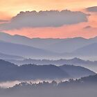 painted morning by dc witmer