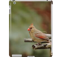 Cardinal Nest Building iPad Case/Skin