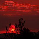 Smokey Dawn I by Jon  Johnson