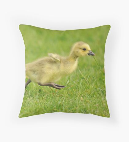 Running Gosling (Leg it!!  Flap wings!!) Throw Pillow