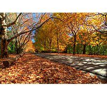 Mount Wilson The Glorious Colours of Autumn NSW Australia Photographic Print