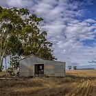The shearing shed by Jan Pudney