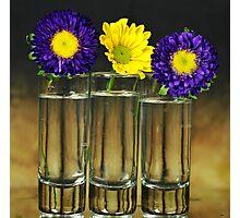 Three vase Photographic Print