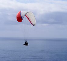 Paragliding ~ La Jolla, California by Marie Sharp