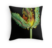 Parrot Tulip Rococo  Throw Pillow