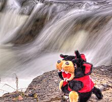 Rascel and Rogue at the Waterfall by Redbubble Devils
