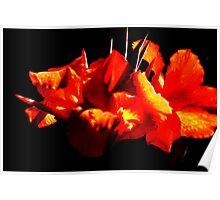 Fiery flowers Poster