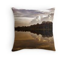 Ancient Reflections Throw Pillow