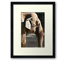 A wrinkle in time... Framed Print