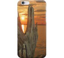 Driftwood sunset iPhone Case/Skin