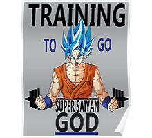 Training to go Super Saiyan God Poster