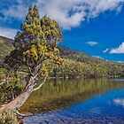 Lake Dobson by Paul Amyes