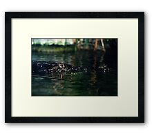 Never smile at a crocodile Framed Print