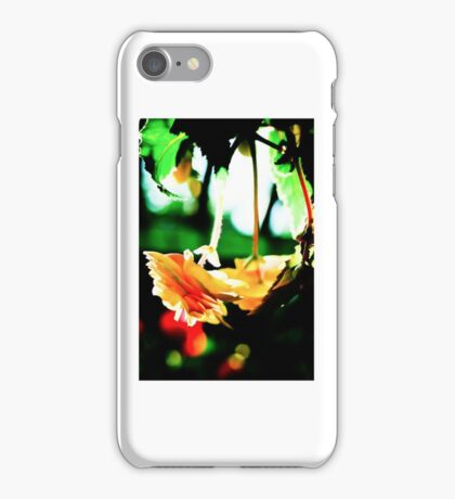 Hanging Basket of Flowers iPhone Case/Skin