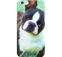 Kate on Blue Green Grass iPhone Case/Skin