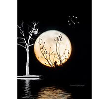 Super Moon Light (T-Shirt) Photographic Print