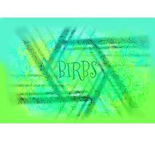 Birbs Photographic Print