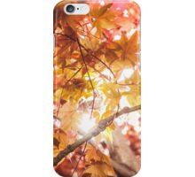 Autumn Tones iPhone Case/Skin