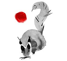 watercolor squirrel. Watercolor hand drawn brush vector  by OlgaBerlet