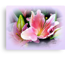 Lily Sunset Canvas Print