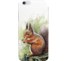 Nutty Squirrel Watercolor Art iPhone Case/Skin