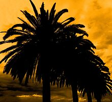Palm Trees Silhouette - Golden Horizon by moonshinepdise