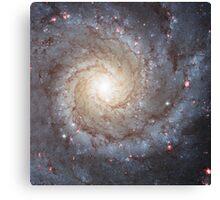Spiral Galaxy Messier 74 Canvas Print
