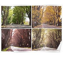 Seasons of The Avenue - Bacchus Marsh Poster