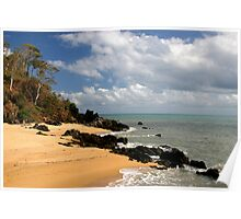 Palm Cove Poster